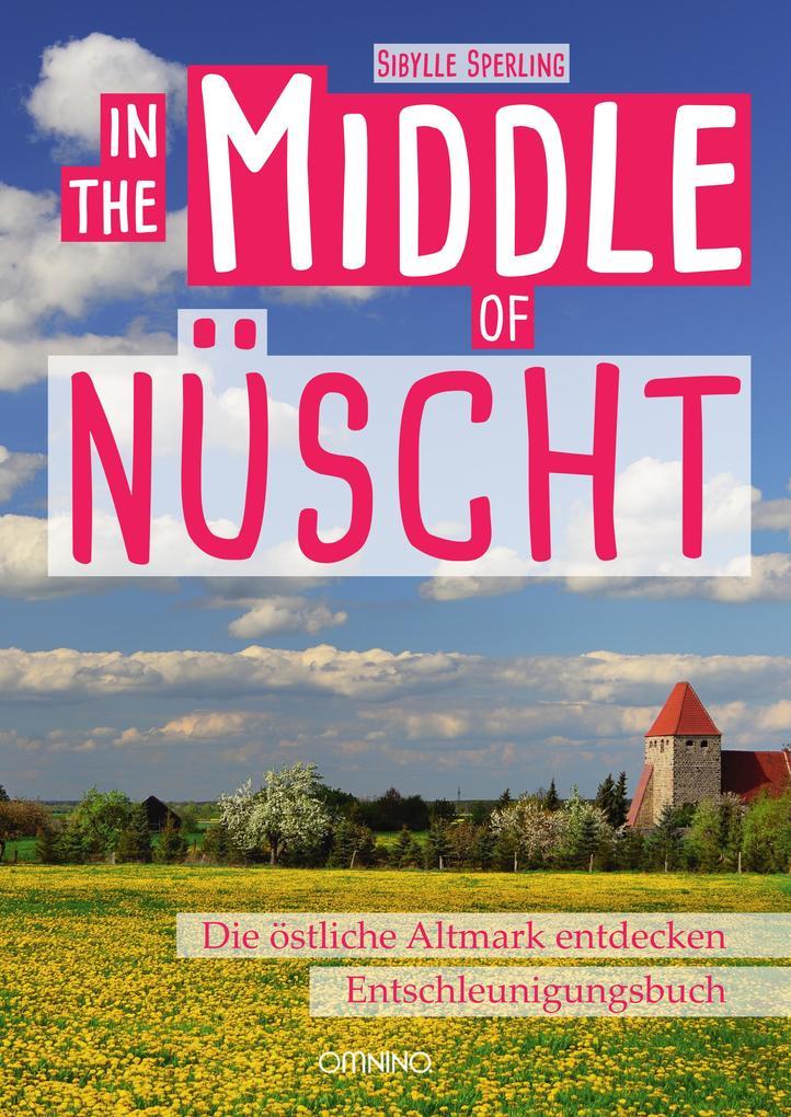 IN THE MIDDLE OF NÜSCHT als Buch (kartoniert)
