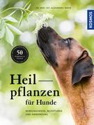 Heilpflanzen für Hunde