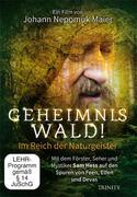 Geheimnis Wald! - Im Reich der Naturgeister (DVD)