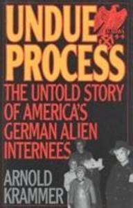 Undue Process als Buch (gebunden)
