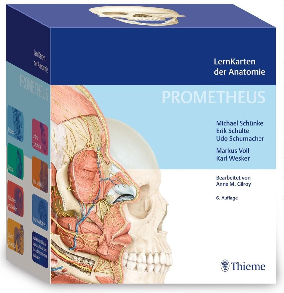 PROMETHEUS LernKarten der Anatomie als Buch