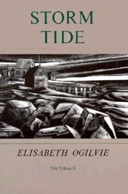 Storm Tide als Taschenbuch