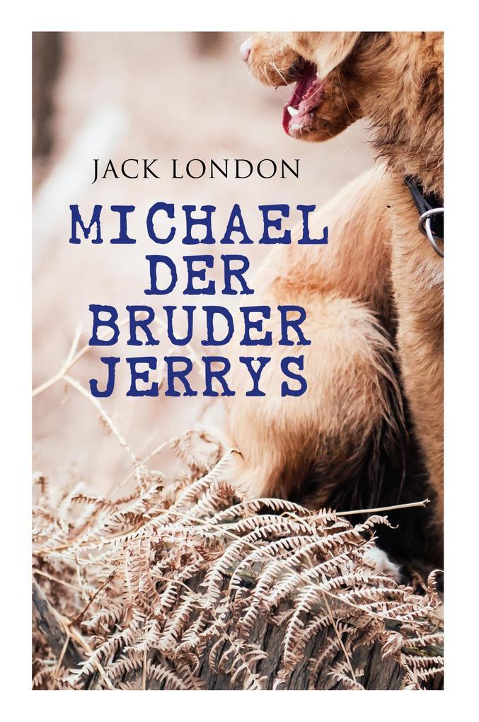 Michael der Bruder Jerrys als Taschenbuch