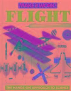 Flight (Make it Work! Science) als Buch (gebunden)