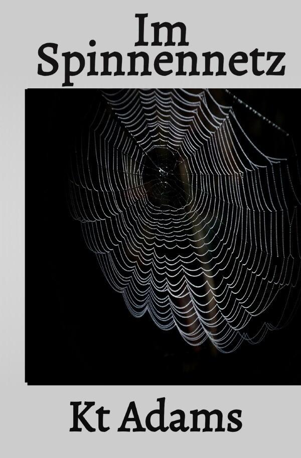 Im Spinnennetz als Buch (kartoniert)