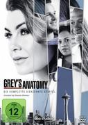 Greys Anatomy - Die jungen Ärzte - Staffel 14