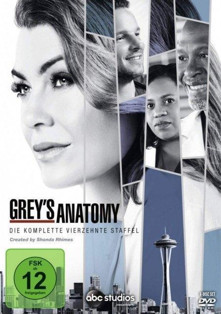 Greys Anatomy - Die jungen Ärzte - Staffel 14 als DVD