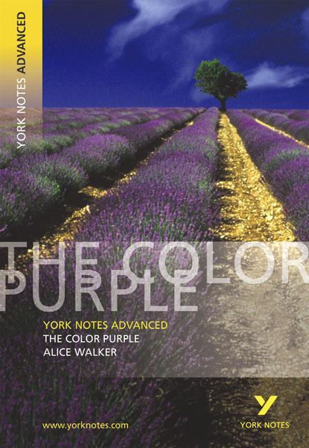The Color Purple: York Notes Advanced als Taschenbuch