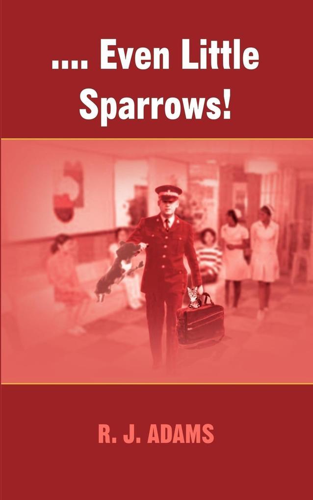 .... Even Little Sparrows! als Taschenbuch