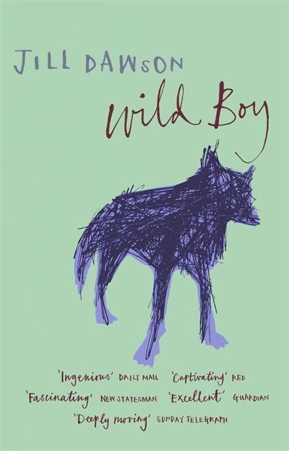 Wild Boy als Taschenbuch