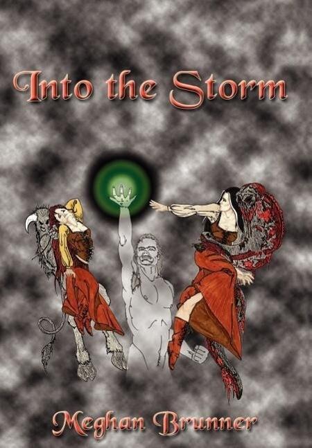 Into the Storm als Buch (gebunden)