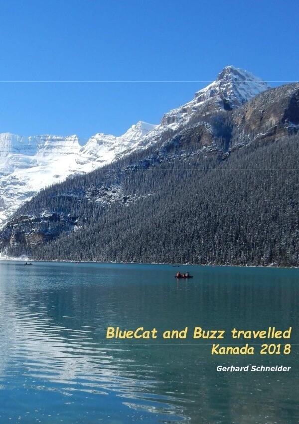 BlueCat and Buzz travelled als Buch (kartoniert)