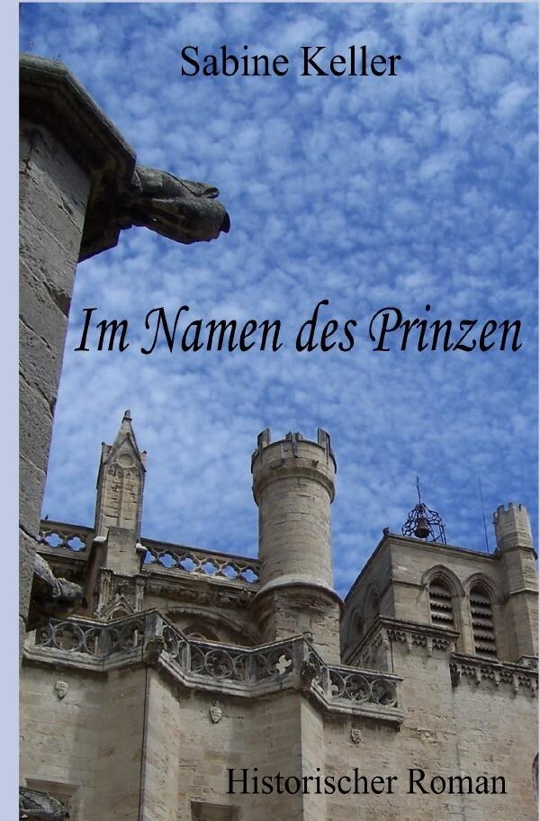 Im Namen des Prinzen als Buch