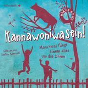 Kannawoniwasein 2: Kannawoniwasein - Manchmal fliegt einem alles um die Ohren