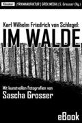 Karl Wilhelm Friedrich von Schlegel: Im Walde