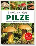 Lexikon der Pilze - Bestimmung, Verwendung, typische Doppelgänger