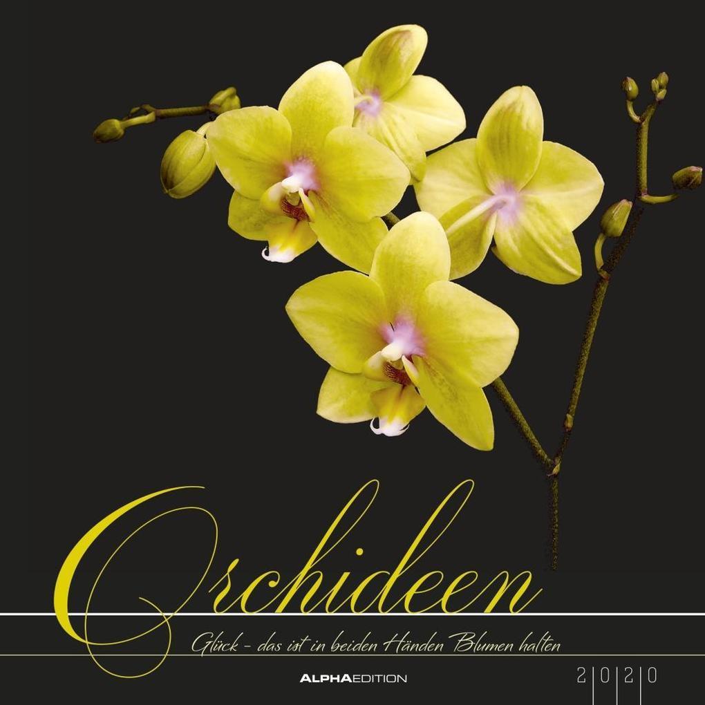 Orchideen 2020 als Kalender