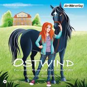 Ostwind - Für immer Freunde & Die rettende Idee