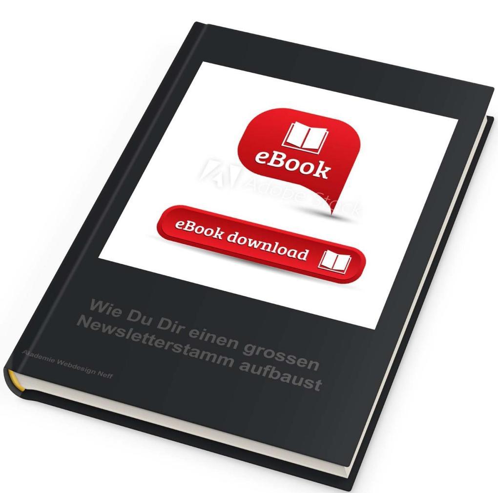 Wie Du einen grossen Newsletter-Stamm aufbaust und als Cash-Maschine nutzt als eBook epub