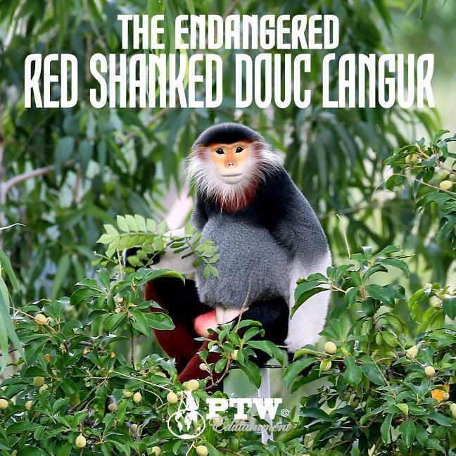 The Endangered Red Shanked Douc Langur als Taschenbuch