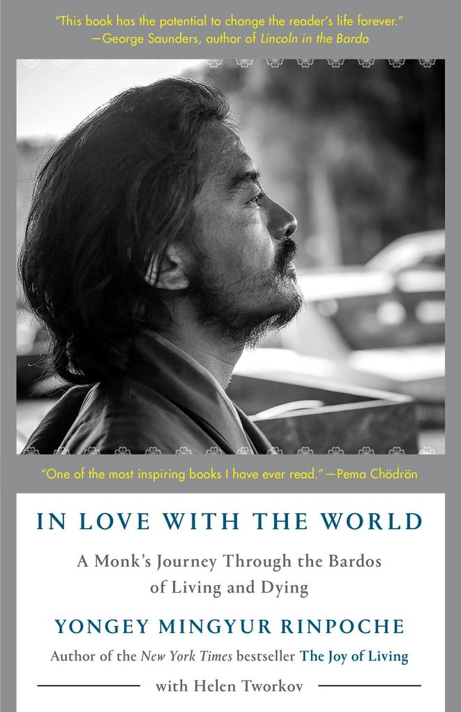 In Love with the World als eBook epub