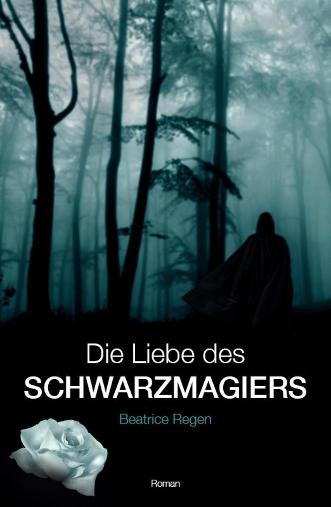Die Liebe des Schwarzmagiers als eBook epub
