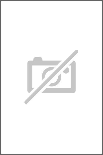 Pumps and Compressors als eBook epub