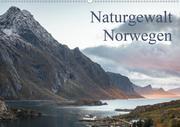 Naturgewalt Norwegen (Wandkalender 2020 DIN A2 quer)