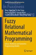 Fuzzy Relational Mathematical Programming