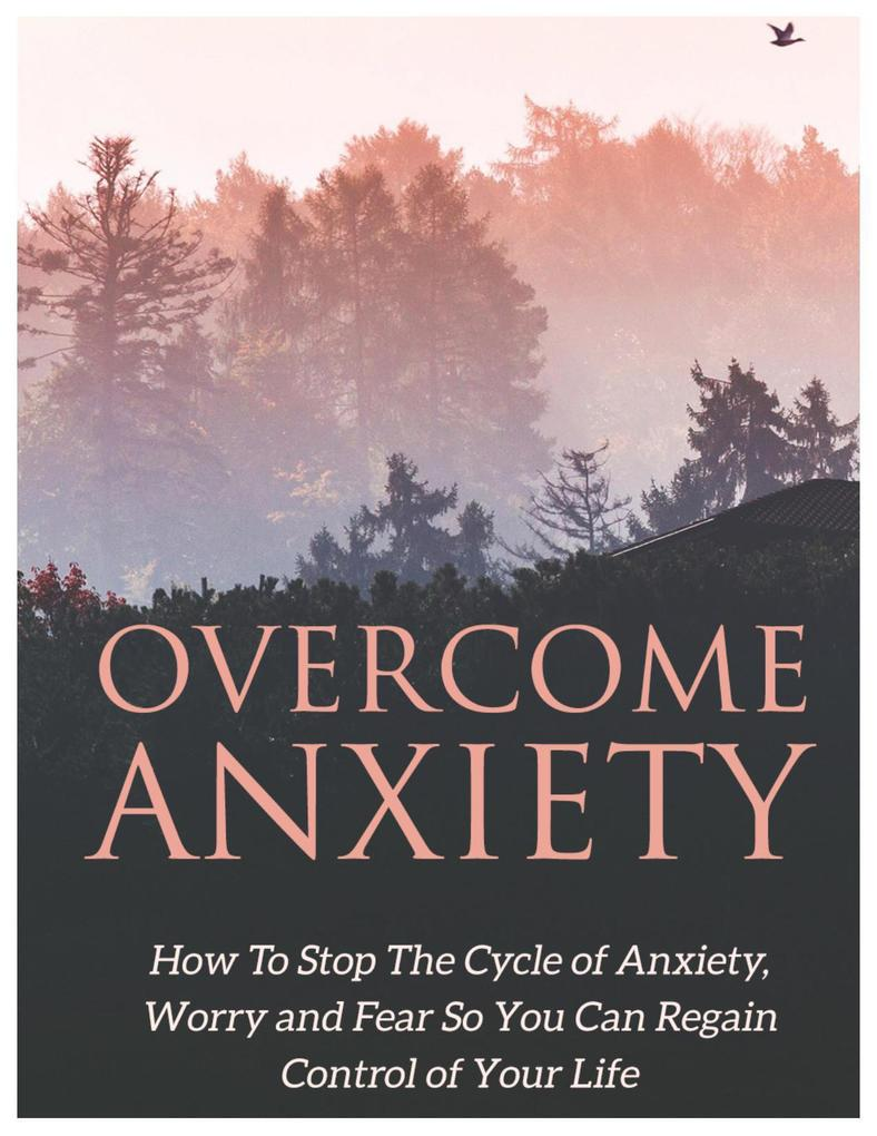 Overcome Anxiety: Learn How to Stop the Cycle of Anxiety, Worry, and Fear So You Can Regain Control of Your Life als eBook epub