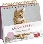 Kluge Katzen 2021