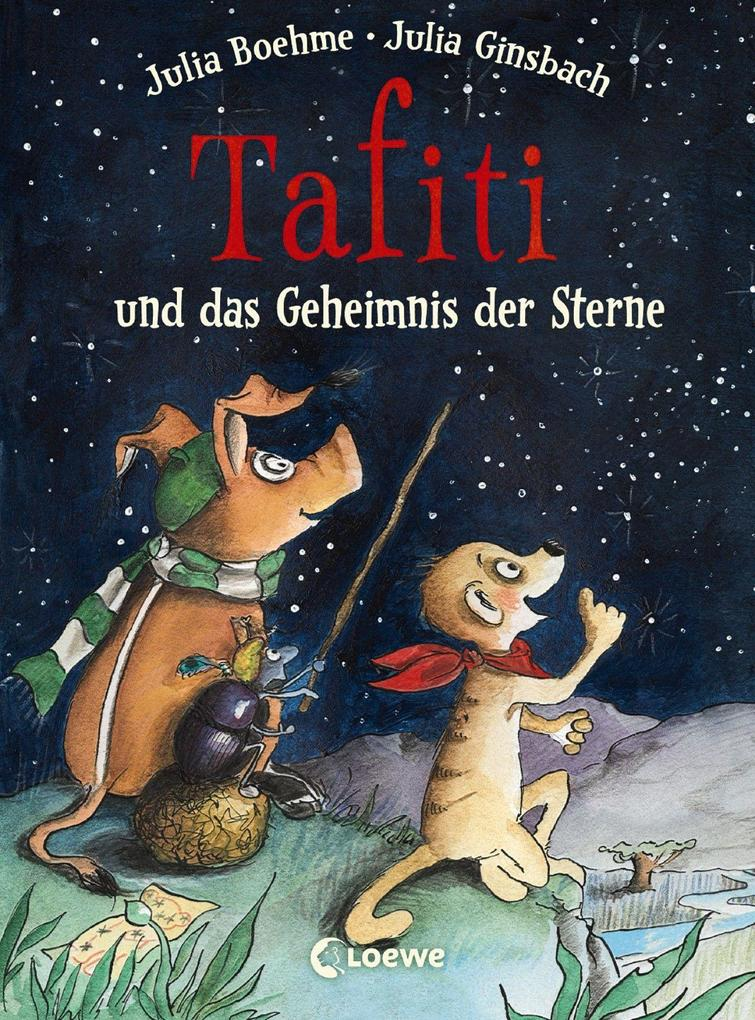 Tafiti und das Geheimnis der Sterne als Buch (gebunden)