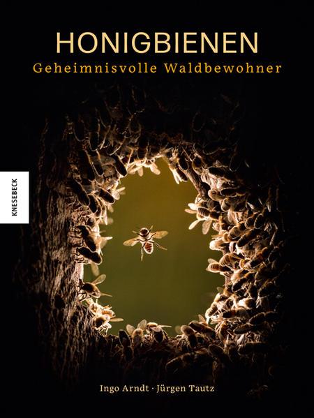 Honigbienen - geheimnisvolle Waldbewohner als Buch (gebunden)