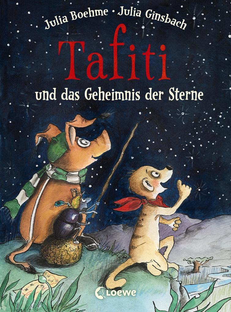 Tafiti und das Geheimnis der Sterne als eBook epub