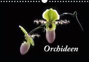 Orchideen 2021 (Wandkalender 2021 DIN A4 quer)