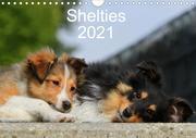 Shelties 2021 (Wandkalender 2021 DIN A4 quer)