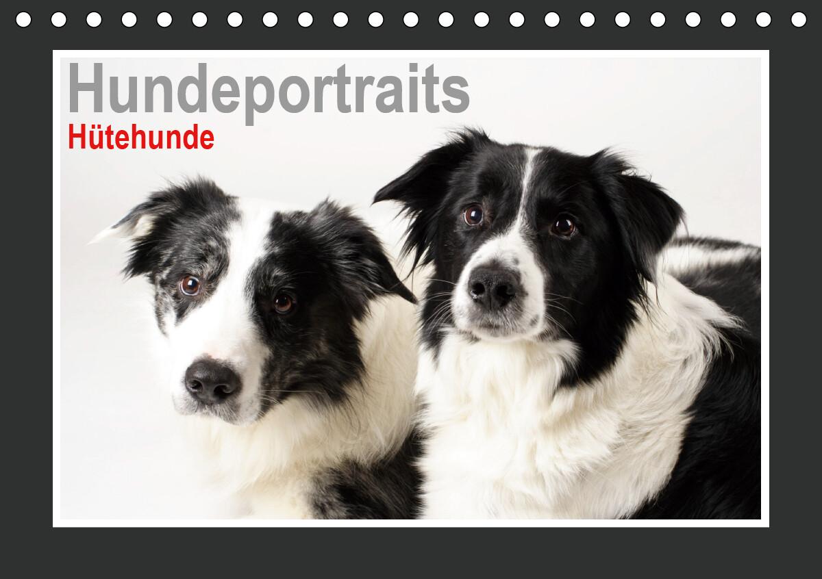Hundeportraits - Hütehunde (Tischkalender 2021 DIN A5 quer) als Kalender