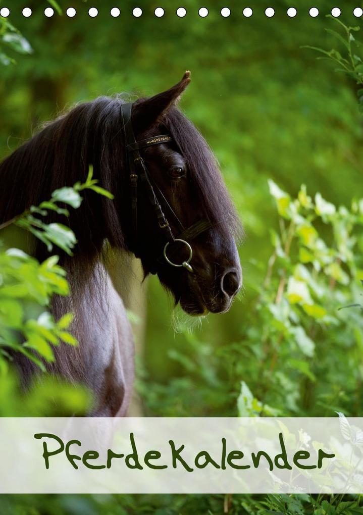 Pferdekalender (Tischkalender 2021 DIN A5 hoch) als Kalender