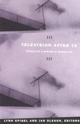 Television after TV: Essays on a Medium in Transition