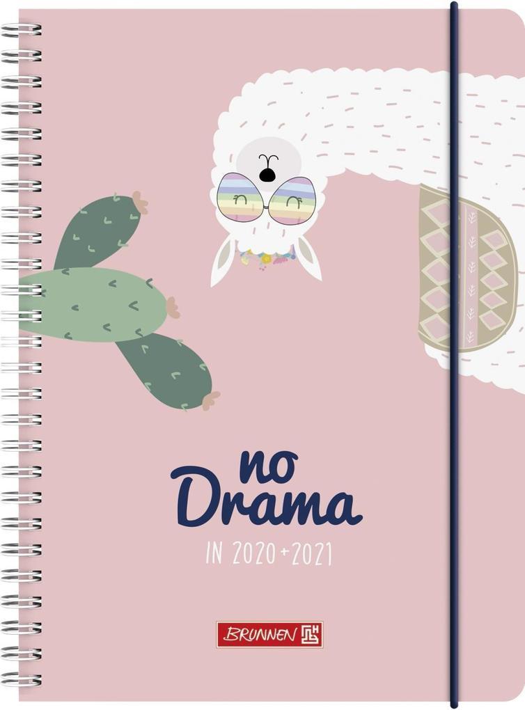 BRUNNEN 1072150031 Wochenkalender/Schülerkalender 2020/2021 Lama Drama als Kalender