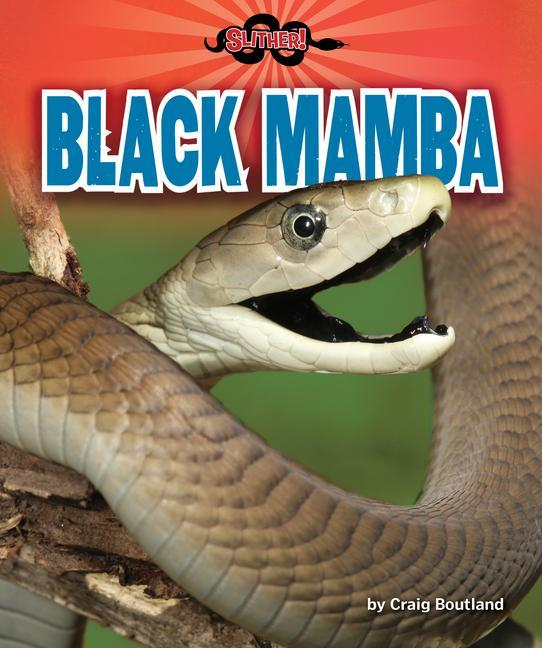 Black Mamba als Taschenbuch