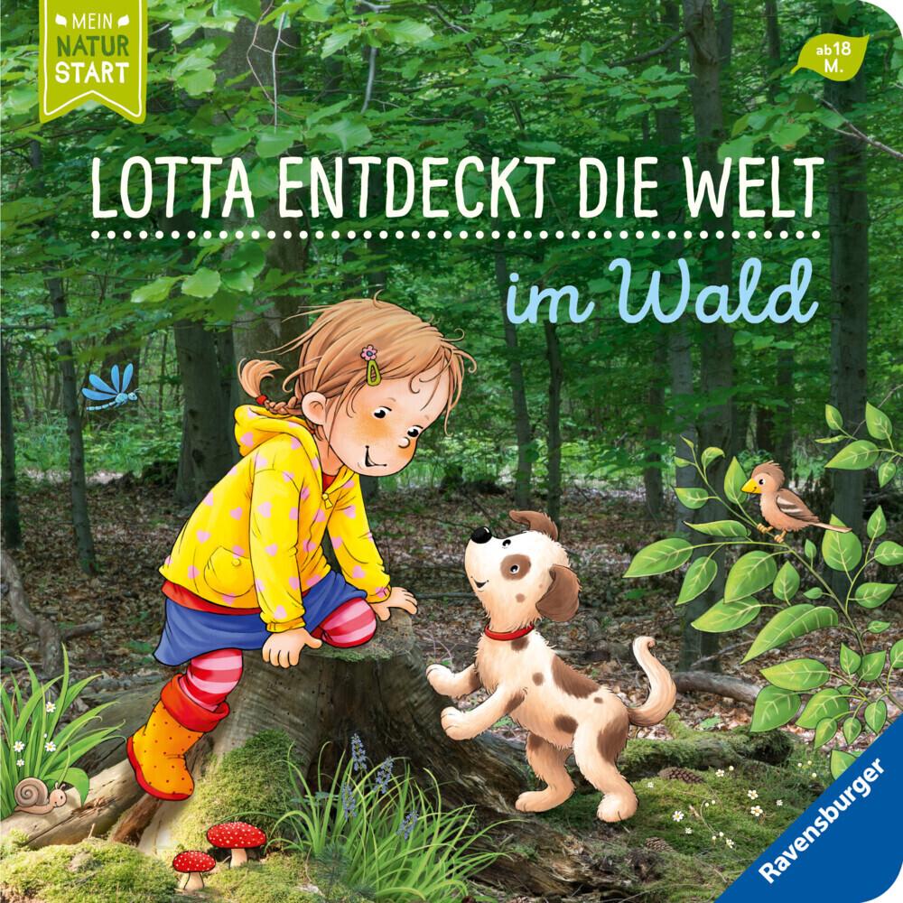 Lotta entdeckt die Welt: Im Wald als Buch (kartoniert)
