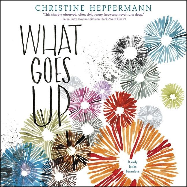 What Goes Up als Hörbuch CD