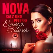 Nova 3 - Salz und Pfeffer: Erotische Novelle