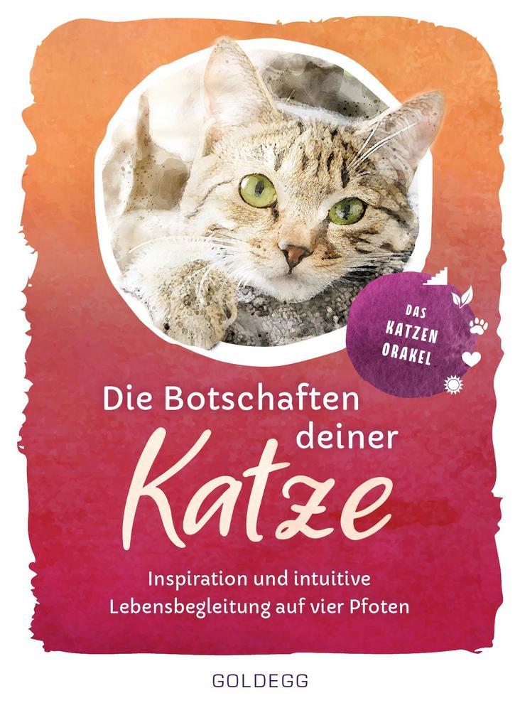 Die Botschaften deiner Katze als Taschenbuch