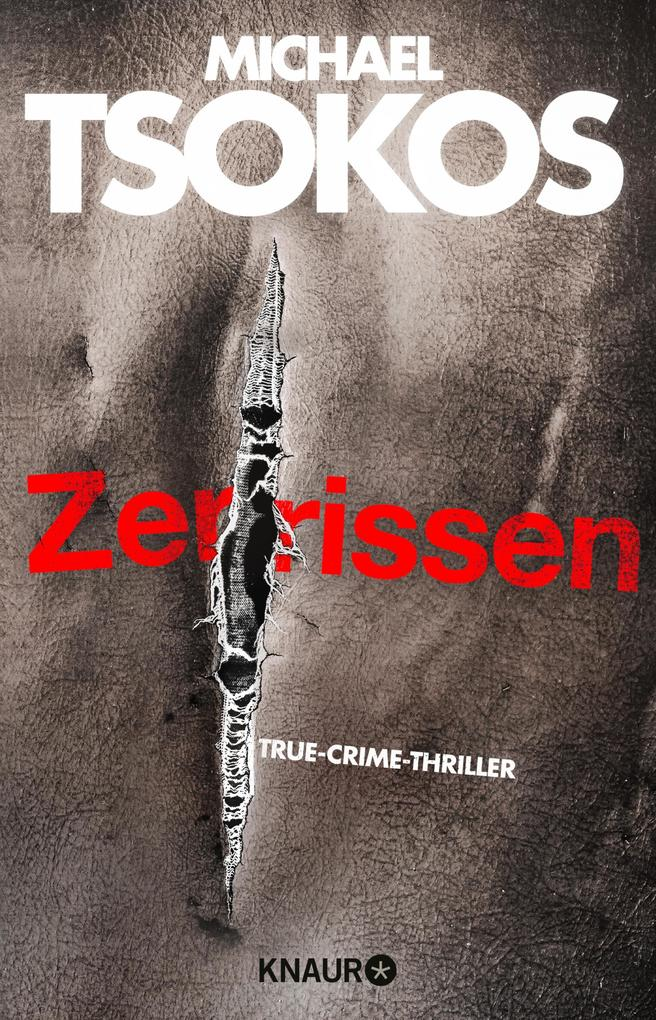 Zerrissen als eBook epub
