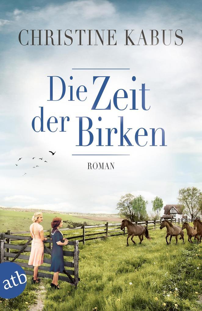 Die Zeit der Birken als eBook epub