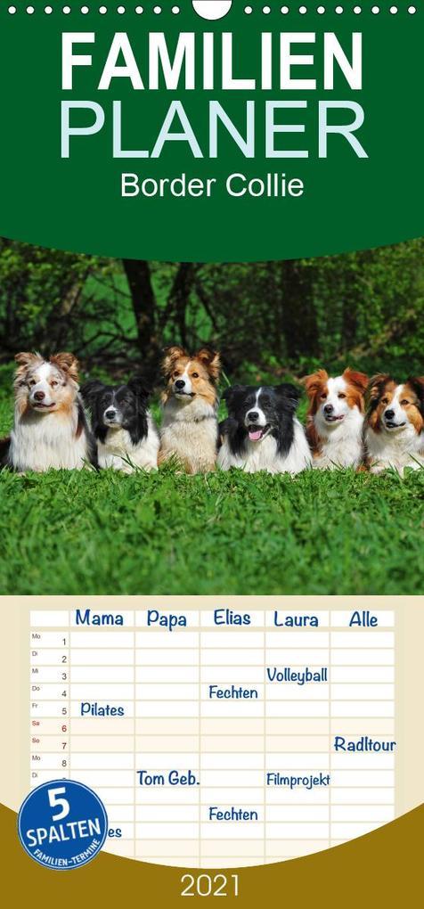 Border Collie 2021 - Familienplaner hoch (Wandkalender 2021 , 21 cm x 45 cm, hoch) als Kalender