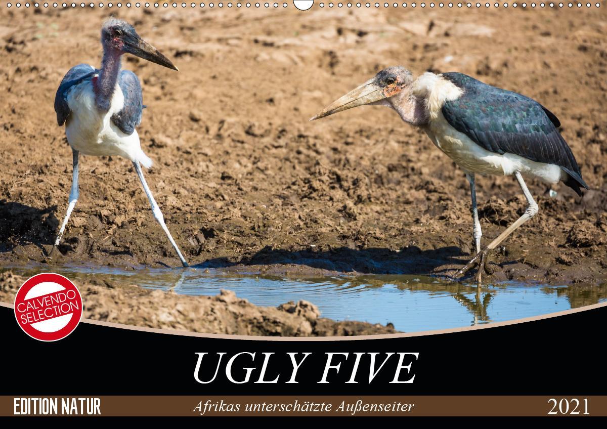 Ugly Five (Wandkalender 2021 DIN A2 quer) als Kalender