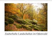 Zauberhafte Landschaften im Odenwald (Wandkalender 2021 DIN A3 quer)